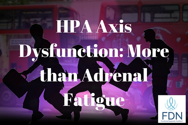 HPA Axis Dysfunction More than Adrenal Fatigue