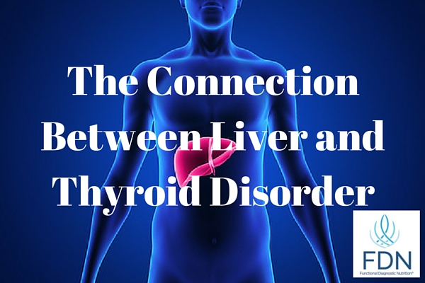 The Connection Between Liver and Thyroid Disorder from Functionaldiagnosticnutrition.com #functionalhealthcoach #fdntraining