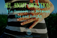 All About Digestion the Connection Between Gut and Health 1