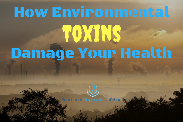 How Environmental Toxins Damage Your Health from Functionaldiagnosticnutrition.com #functionalhealthcoach