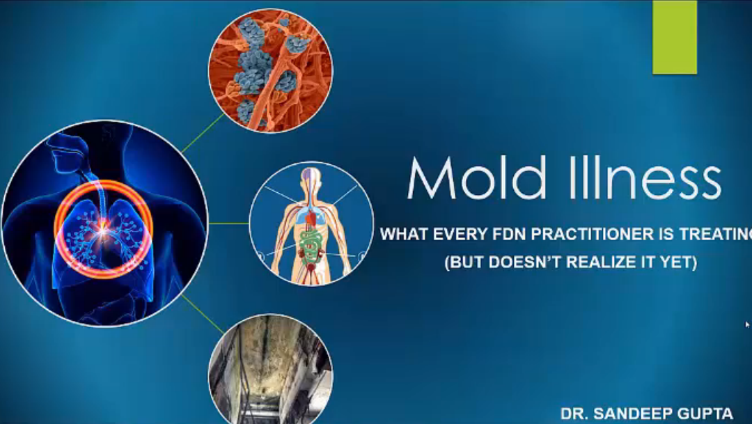 Mold Illness with Dr. Sandeep Gupta