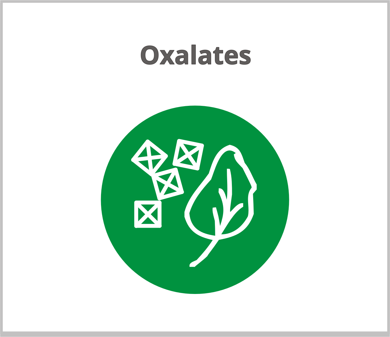 Training Oxalates | Functional Diagnostic Nutrition