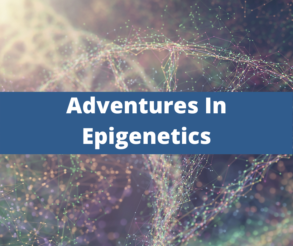 Adventures In Epigenetics Functional Diagnostic Nutrition. Health coach certification, certified health coach, health coach jobs, Jobs for health coaches, health coach jobs remote, online health coaches, virtual health coach jobs, health coach websites, health coaching websites, websites for health coaches, functional nutrition certification