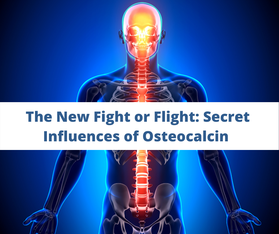 The New Fight or Flight_ Secret Influences of Osteocalcin Functional Diagnostic Nutrition. Health coach certification, certified health coach, health coach jobs, Jobs for health coaches, health coach jobs remote, online health coaches, virtual health coach jobs, health coach websites, health coaching websites, websites for health coaches, functional nutrition certification